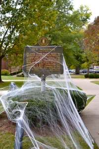 Halloween decorations on campus!