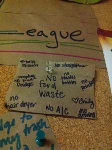 Here's my eco-pledge! And I survived the week successfully!